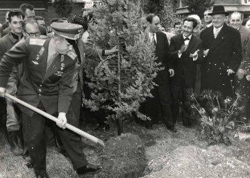 Первый космонавт планеты сажает дерево.